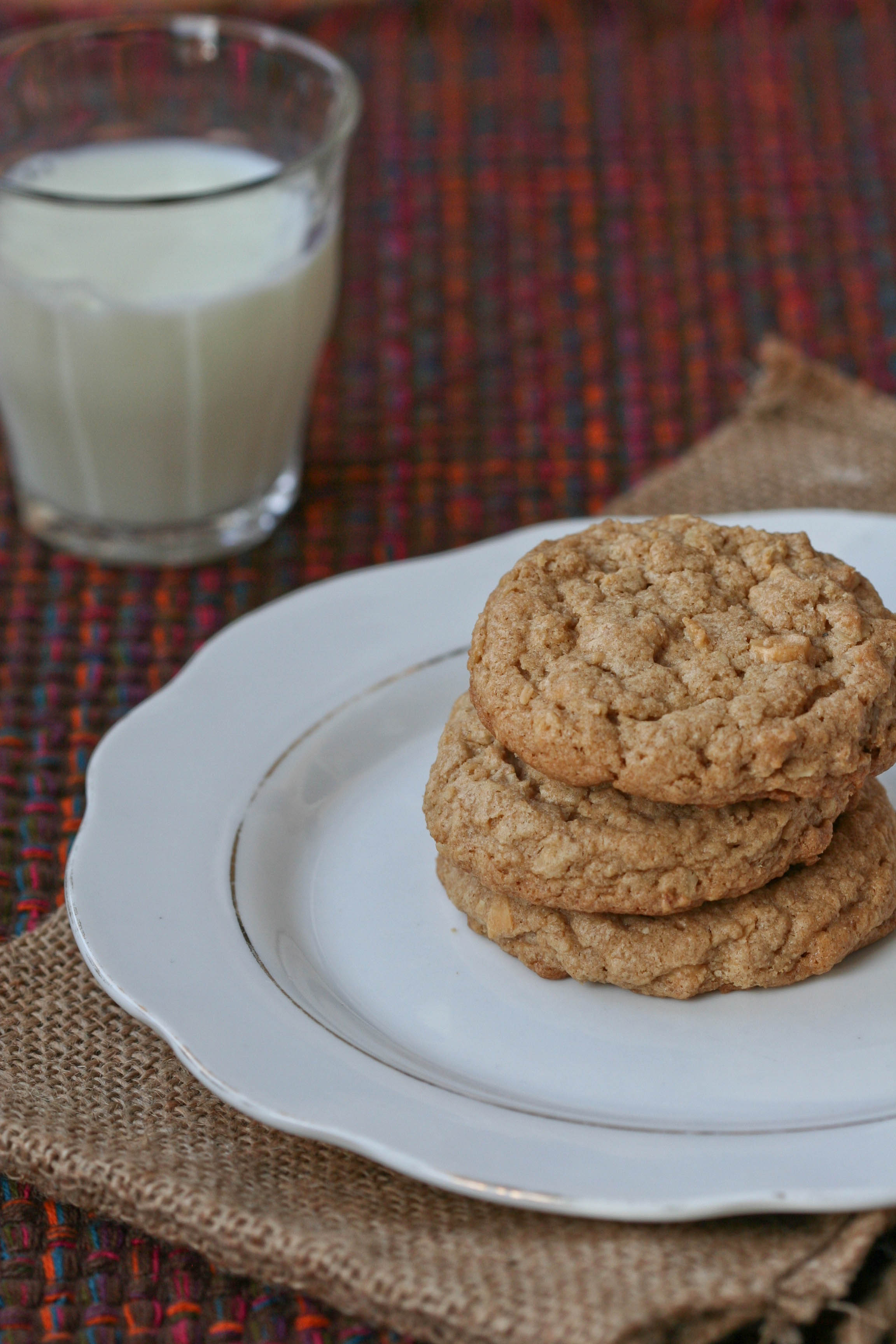 Tag Archives: peanut butter oatmeal cookies